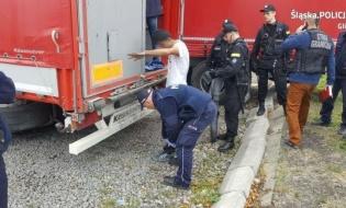 Nielegalni imigranci zatrzymani w Gliwicach